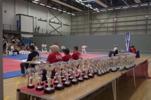 Open Championships June 2013